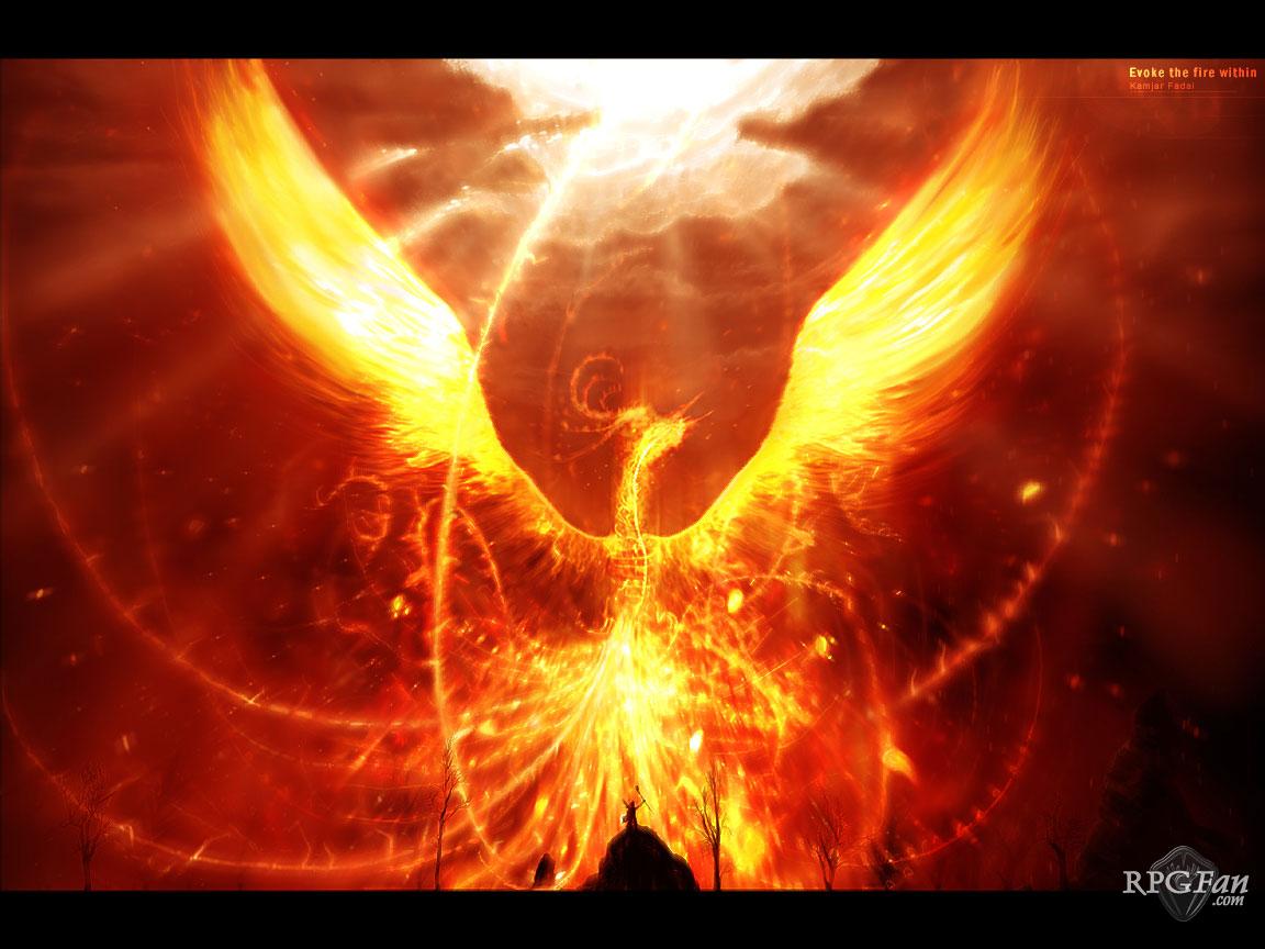 My Love is like a Phoenix…